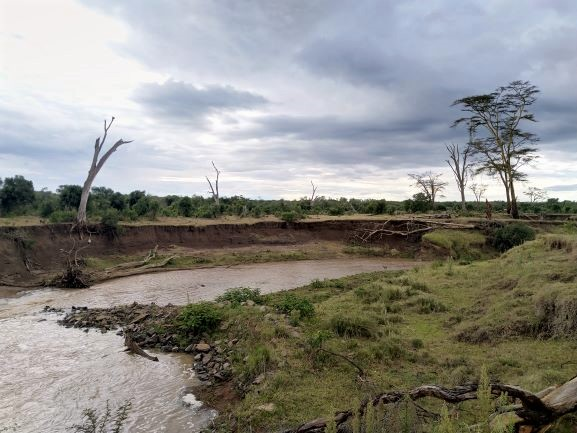 Rio Ewaso Nyiro a su paso por Ol Pejeta. Por Udare