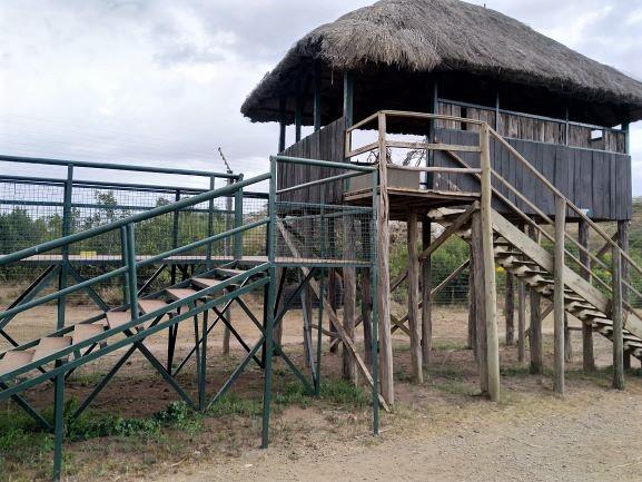Torre de observación en Ol Pejeta Conservancy. Por Udare