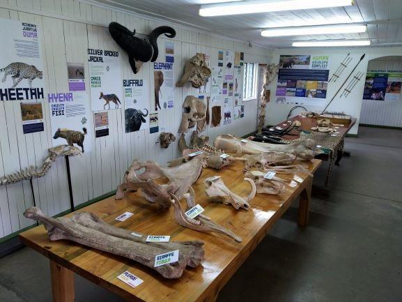 Interior del centro informativo de Ol Pejeta Conservancy. Por Udare