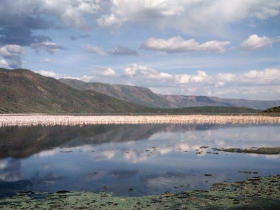Lago Bogoria en Kenia. Por Udare