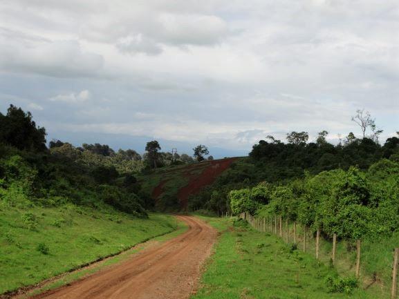 Parque Nacional Aberdare. Por Udare