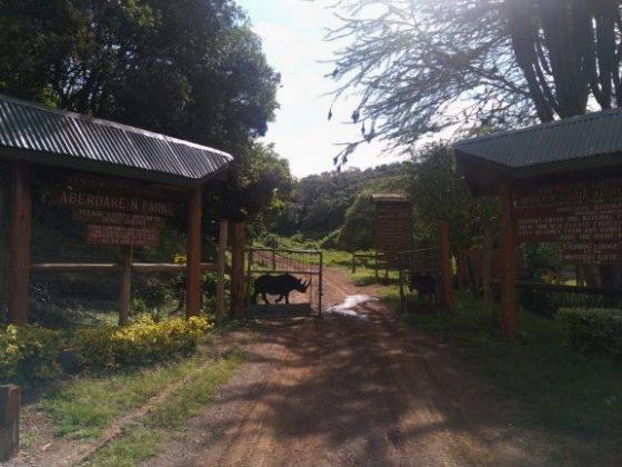 Puerta de acceso al Parque Nacional de Aberdare en Kenia. Por Udare