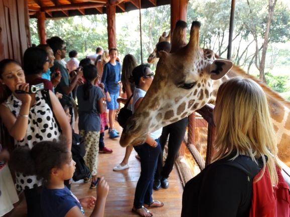 Turistas en Giraffe Centre de Nairobi. Por Udare
