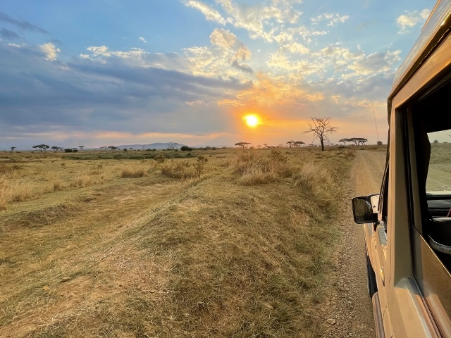 Atardece en Serengeti. Por Anna