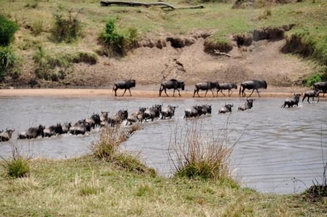 Cruce del río Mara. Por Marisa y Jose